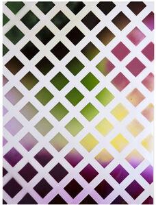 Sam Falls, 'Untitled (Painted Photograms, Lattice 70)', 2013