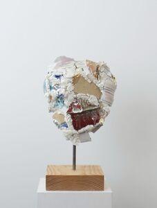 Robin Cameron, 'The Apprehensive Disheart', 2013