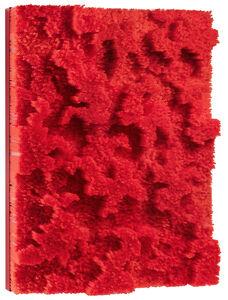 Francesca Pasquali, 'Red straws', 2018