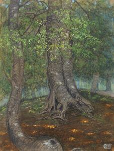 Otto Dix, ' Forest Clearing | Waldlichtung', 1908