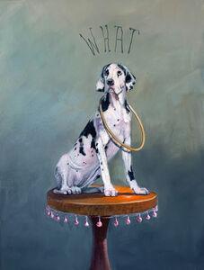 Deborah Davidson, 'Harlequinn Puppy', 2019
