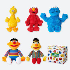 KAWS x Sesame Street (complete set of 5 with box)