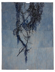 Maysey Craddock, 'the language of trees', ca. 2019