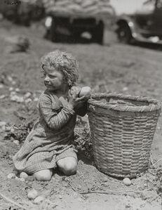 Lewis Wickes Hine, 'Child Picking Long Island Potatoes', ca. 1912