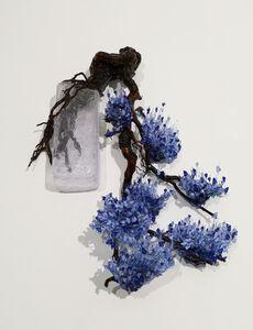 Annalù Boeretto, 'Blue Han-Kengai', 2020