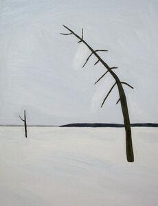 Yuko Murata, 'Eternal snow ', 2009