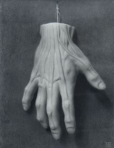Lucas Bononi, 'Anatomy of a Hand', 2020