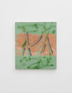 Matthew Musgrave, 'Grass Drawing Leg', 2014