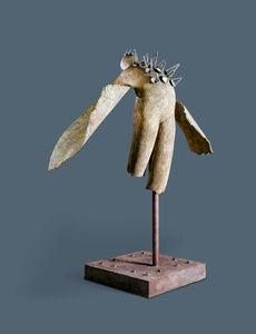 Jim Amaral, 'Cisne dos', 2000
