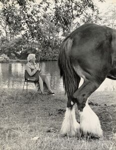 Shirley Baker, 'Untitled (woman and horse)', 1968