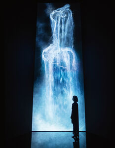 teamLab, 'Universe of Water Particles', 2013