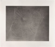 Vija Celmins, 'Untitled (Web 4)', 2002