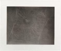 Vija Celmins, 'Untitled (Web #4)', 2002