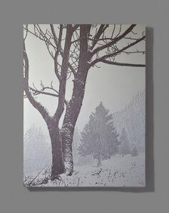 Christian Verginer, 'The First Snowfall', 2014