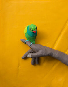 Eleanor Macnair, 'Original photograph: From 'The Lost Head & The Bird' by Sohrab Hura rendered in Play-Doh ', 2019