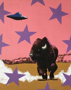 Frank Buffalo Hyde, 'Buffalo Fields Forever Contact II', 2014
