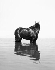 Oded Balilty, 'Front (Shikma River, Zikim Beach, Gaza Border)', 2017