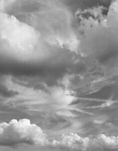 Mitch Epstein, 'Clouds #89, New York City', 2015
