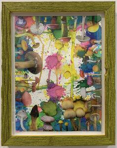 Douglas Melini, 'Untitled (SHRooMS) Yellow frame', 2019