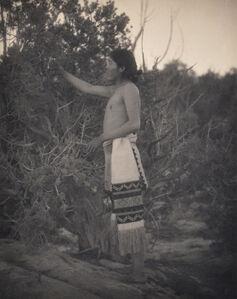 Laura Gilpin, 'Indian Plucking Cedar Branch', 1925