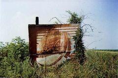 Pepsi Cola Sign in Landscape - Near Uniontown, Alabama
