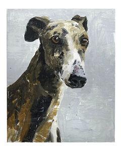 Richard Storms, 'Greyhound', 2018