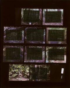 Sissi Farassat, 'Contactprint #17', 2016