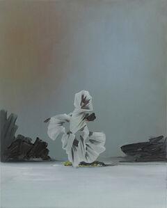 Ivan Seal, 'the persuaded fac511989', 2015
