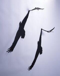 AKIO OHMORI, 'Eagle's hearts'