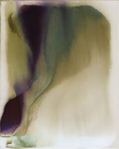 Saul Robbins, 'Chemical Peel (131829)', 2018