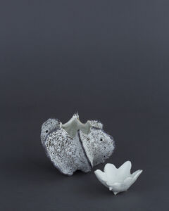 Koike Shôko, 'White Form '
