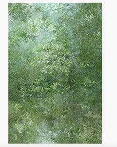 Kim Boske, 'I go walking in your landscape 2', 2012