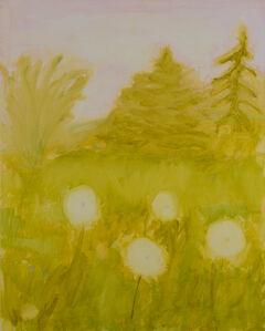 Kathryn Lynch, 'Dandelion Field', 2020