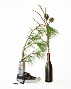 Hanna Liden, 'Pines', 2016