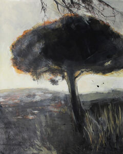 Bea Sarrias, 'The Pine in the Sunset ', 2019