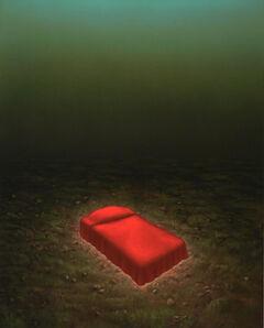 Steve Galloway, 'ABOUT 20 FEET', 2014