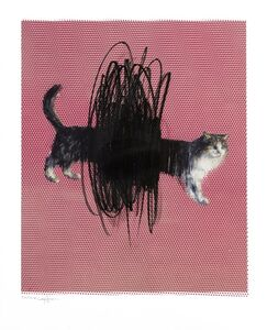 Charming Baker, 'One or Two Cats ', 2016