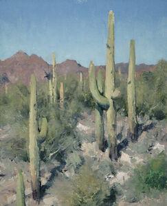 "Matt Smith (b. 1960), '""Queen Valley Saguaros""'"