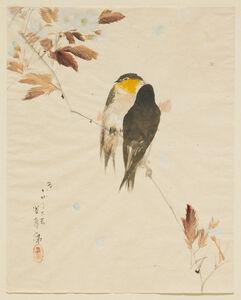 Watanabe Seitei, 'Birds on a Branch', 1871-1917