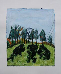 John Borden Evans, 'Power Line and Cedars', 2019