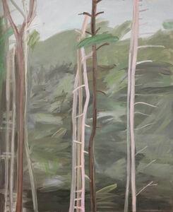 Nancy Mitchnick, 'Pale Trees', 2008