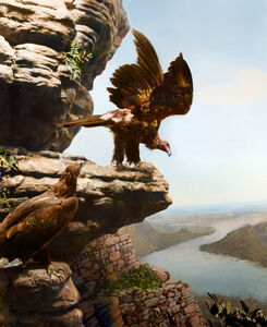 Anne Zahalka, 'Wedge Tail Eagle, Mt Bell eld in Serra Valley, The Grampians, Victoria', 2019
