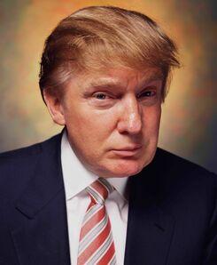 Andres Serrano, 'Donald Trump (America) ', 2004