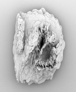 Stepan Ryabchenko, 'White Noise', 2009