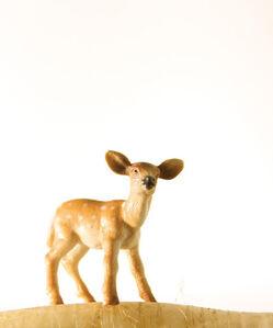 Matthew Carden, 'Daikon the Deer'