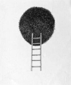 Douglas Rodrigo Rada, 'Ascent', 2017