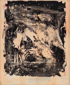 Fernando Prats, 'Natura Naturans 16', 2006