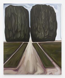 Nancy Moreno, 'Expérience incongrue', 2017