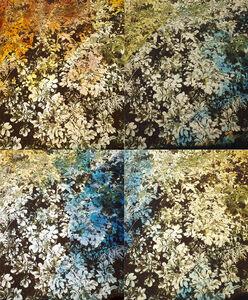 Bryan Graf, 'Paradise Mirror I', 2015
