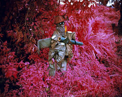 Richard Mosse, 'Better Than The Real Thing', 2012